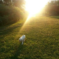 Photo taken at Airport Dog Park by Brian L. on 7/25/2013