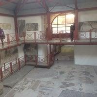 11/10/2013 tarihinde Hakan U.ziyaretçi tarafından Büyük Saray Mozaikleri Müzesi'de çekilen fotoğraf