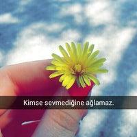 Photo taken at Ümit Kız Öğrenci Yurdu by Rukiye A. on 4/7/2016