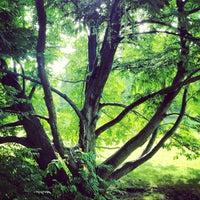 Photo taken at Britzer Garten by ibo •. on 10/22/2012