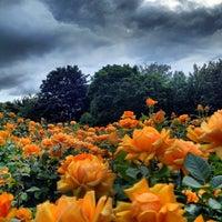 Photo prise au Queen Mary's Gardens par ibo •. le9/30/2012