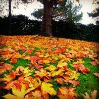 12/10/2012 tarihinde Tarık A.ziyaretçi tarafından Boğaziçi Üniversitesi Kuzey Kampüsü'de çekilen fotoğraf