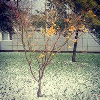 12/20/2012 tarihinde Tarık A.ziyaretçi tarafından Boğaziçi Üniversitesi Kuzey Kampüsü'de çekilen fotoğraf