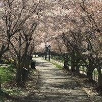 Photo taken at Hazel Ruby McQuain Park by Brenda S. on 4/2/2016