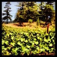 Foto tomada en Toulouse Vineyards por Kouros M. el 5/31/2013