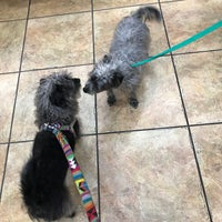 Photo taken at Happy Paws by Kristen V. on 5/26/2017