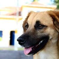 Photo taken at Solar do Ferreiro Torto by Clebson I. on 8/8/2014