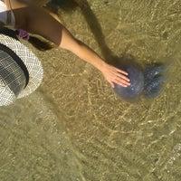 Снимок сделан в Пляж Коблево пользователем Mariana D. 8/29/2014