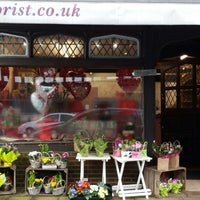 Photo taken at Pipers Florist by bigblue m. on 1/23/2014