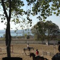 10/14/2012 tarihinde Onur S.ziyaretçi tarafından Gürman At Çiftliği'de çekilen fotoğraf