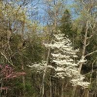 Photo taken at Dixon Springs State Park by Joe G. on 4/13/2016