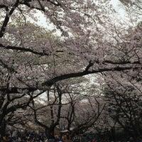 4/2/2016にK T.が代々木公園 南門で撮った写真
