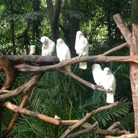 Photo taken at Xiang Jiang Safari Park, Guangzhou by Aad H. on 9/22/2013