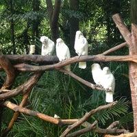 9/22/2013에 Aad H.님이 Xiang Jiang Safari Park, Guangzhou에서 찍은 사진
