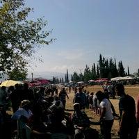 Photo taken at çaylı at yarışı sahasi by Davuthan H. on 9/27/2015