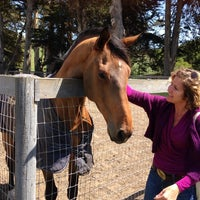 Photo taken at Rancho Nicasio Restaurant by Sue Y. on 4/19/2014
