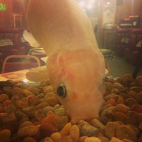Photo taken at Luo's Peking House Chinese Restaurant by Noel M. on 3/2/2015