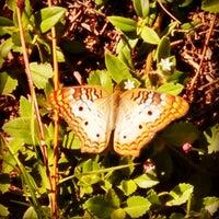 Photo taken at Stuart, FL by Ambika D. on 7/9/2014