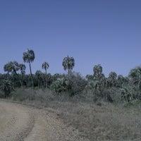 Das Foto wurde bei Parque Nacional El Palmar von Laura R. am 8/16/2013 aufgenommen