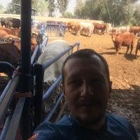 Photo taken at kralın çiftliği by TC Merter Y. on 4/10/2018