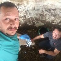 Photo taken at kralın çiftliği by TC Merter Y. on 5/11/2018