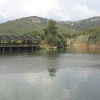 9/6/2014 tarihinde Suna Y.ziyaretçi tarafından Saklı Göl Restaurant & Nature Club'de çekilen fotoğraf