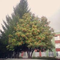 Photo taken at Гимназия №19 by Tatiana F. on 7/28/2014
