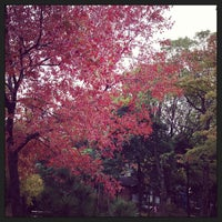 Photo taken at 京町雨水滞水池 多目的広場 by Kengo 5. on 11/2/2013