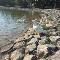 8/18/2017 tarihinde Vildan Ç.ziyaretçi tarafından Uluönder Yürüyüş | Koşu Yolu'de çekilen fotoğraf