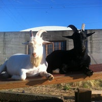 Photo taken at The Belmont Goats by b!X F. on 6/10/2013