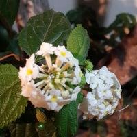 Photo taken at The Garden by Ceren K. on 6/17/2014