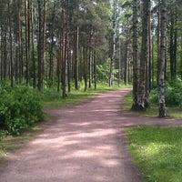 Photo taken at Кленовая Аллея В Сосновке by Alexander P. on 6/5/2014