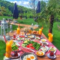 5/7/2016 tarihinde Kübra Y.ziyaretçi tarafından Villa Polonez'de çekilen fotoğraf