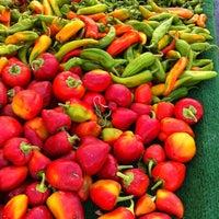 Photo taken at Hollywood Farmer's Market by Sara R. on 9/16/2012