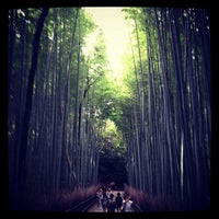Photo taken at Arashiyama Bamboo Grove by Atsushi F. on 10/6/2012