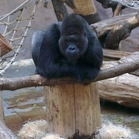 Photo taken at Pavilon goril by Tomas S. on 12/1/2012