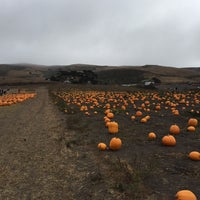 Photo taken at Bob's Pumpkin Patch by Andrew D. on 10/10/2015