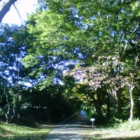 Photo taken at Arnold Arboretum by Andreas B. on 10/11/2012