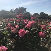 Photo taken at Southsea Rose Garden by Soudabeh S. on 6/13/2017