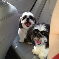 Photo taken at PetSmart by Robby T. on 2/18/2013
