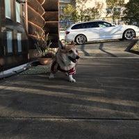 Снимок сделан в 貸切ログハウス ロッキー пользователем Takahiko I. 12/17/2015