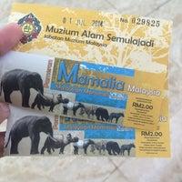 Photo taken at Muzium Alam Semulajadi by Nelly N. on 7/1/2014