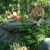 Photo taken at Zoo Brew by Katie C. on 7/10/2013