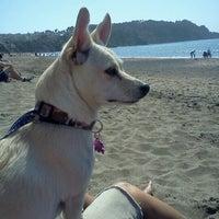 Photo taken at Baker Beach by Casey K. on 4/22/2013