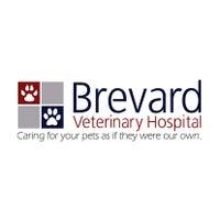 Photo taken at Brevard Veterinary Hospital by Yext Y. on 10/13/2016