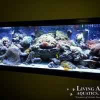 ... Photo Taken At Living Art Aquatics, Inc. By Yext Y. On 10/ ...