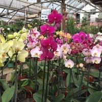 ... Photo Taken At Michaelu0026amp;#39;s Garden Gate Nursery By Yext Y. ...