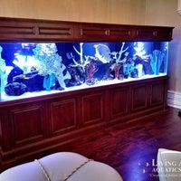 High Quality ... Photo Taken At Living Art Aquatics, Inc. By Yext Y. On 10/ ...