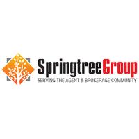 Springtree Group, LLC