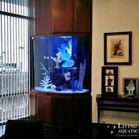Captivating ... Photo Taken At Living Art Aquatics, Inc. By Yext Y. On 10/ ...